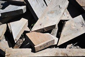 abandoned timber
