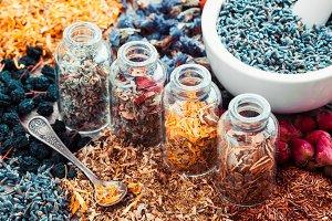 Bottles of healing herbs