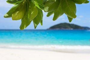 Beach in Similan island