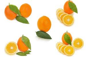Set of fresh oranges.