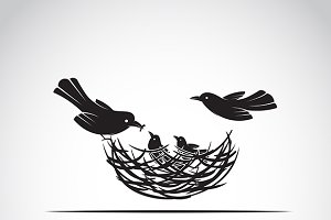 Vector image of an birds family