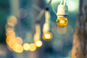 Old decorate light bulb