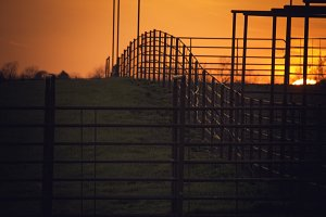 Fence line at Sunset