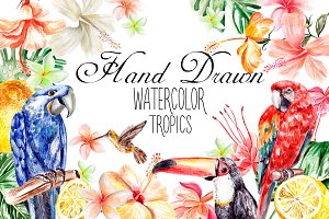 Hand Drawn watercolor TROPICS