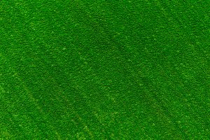 Green artificial grass pattern