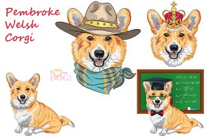 Pembroke Welsh corgi SET