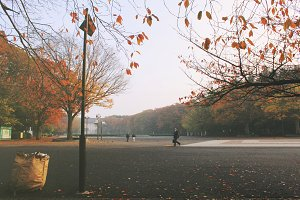 Morning park in Tokyo