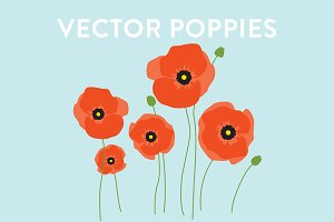 Vector Poppy Flowers