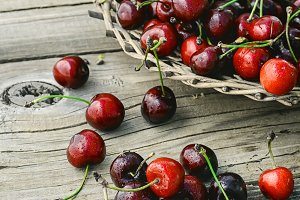 Harvest rustic cherry