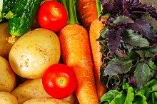 Ripe fresh vegetables. Harvest