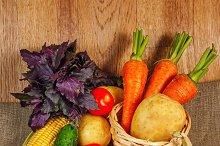 Fresh ripe vegetables. Healthy food