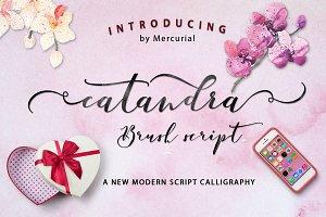 Catandra Script_Update