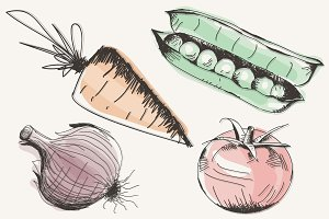 Hand drawn vegetables illustration