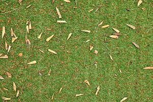 Artificial grass with leaves