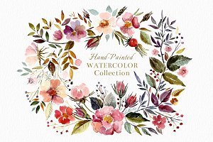 Big watercolor floral collection