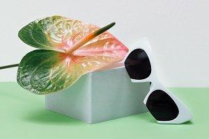 Trendy white Sunglasses