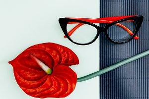 Stylish Ladies Glasses