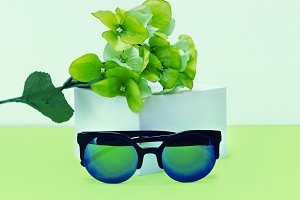 Fashionable Synglasses Fresh Mix