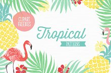 6 Vector tropical patterns + Clipart