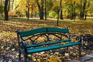 Autumn city park.
