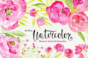 45 pink watercolor flowers