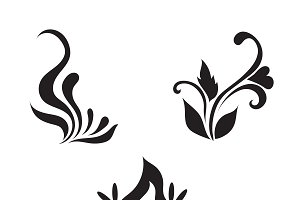 floral vector elements, vector