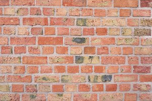 Colorful red brick wall texture