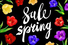 Vector sale spring colorful tulips