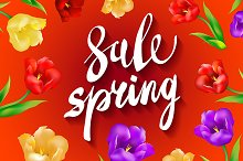 red. Spring Sale colorful tulips