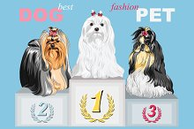 Fashion Dog champion