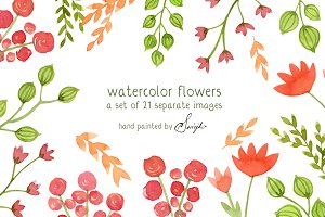 Watercolor Flowers, Floral