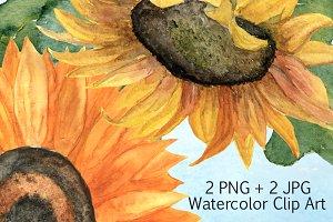 2 JPG + 2 PNG Sunflower Clip Art