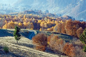 Autumn mountain slope