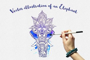 Elephant Vector Watercolor