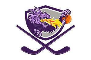 Dragon Fire Ball Hockey Stick Crest