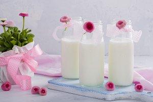 Homemade yogurt on a light background