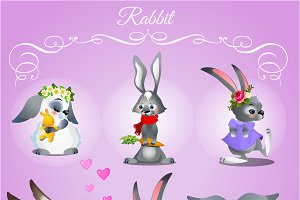 Rabbits with different characters