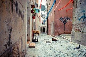Lisbon alley I