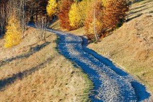Rural road in autumn misty mountain