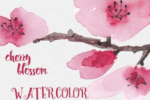 Watercolor Cherry blossom set