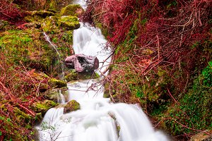 Stream with intense colors II