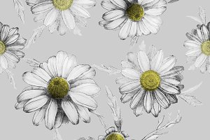 pattern of realistic daisies