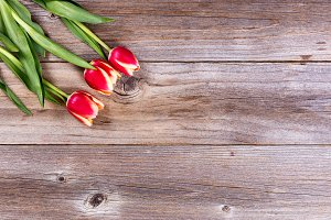 Gift of Flowers on Wood