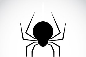 Vector image of an spider