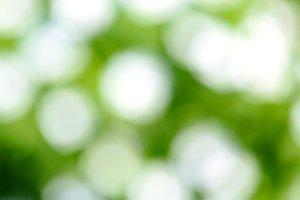 Fresh green blur background