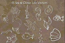 Sea & Ocean Life - Hand Drawn Vector