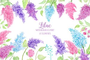 Watercolor Clipart Lilac Flowers