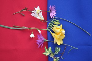flowers on green and red cloth