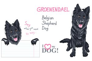 Belgian Shepherd Dog SET