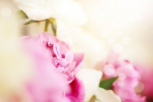 Wedding pink flowers